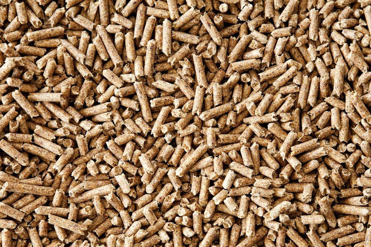 К 2030 году Япония будет потреблять 20 млн т древесных пеллет
