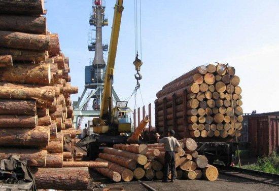В январе-августе 2019 г. Япония сократила импорт хвойного пиловочника из России на 15,8%