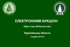 Аукціон з продажу круглих лісоматеріалів заготівлі 1 кварталу 2020 р Чернігівській області