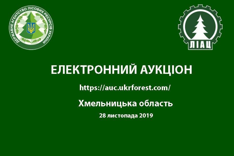 Аукціон з продажу необробленої деревини заготівлі  1 кварталу 2020 року по Хмельницькій області