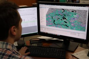 В России с помощью дистанционного мониторинга выявлено более 1,8 тыс. случаев незаконной заготовки древесины
