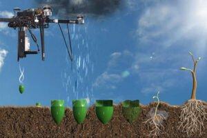 Высокотехнологичное озеленение: Канадские ученые хотят при помощи дронов посадить миллиард деревьев