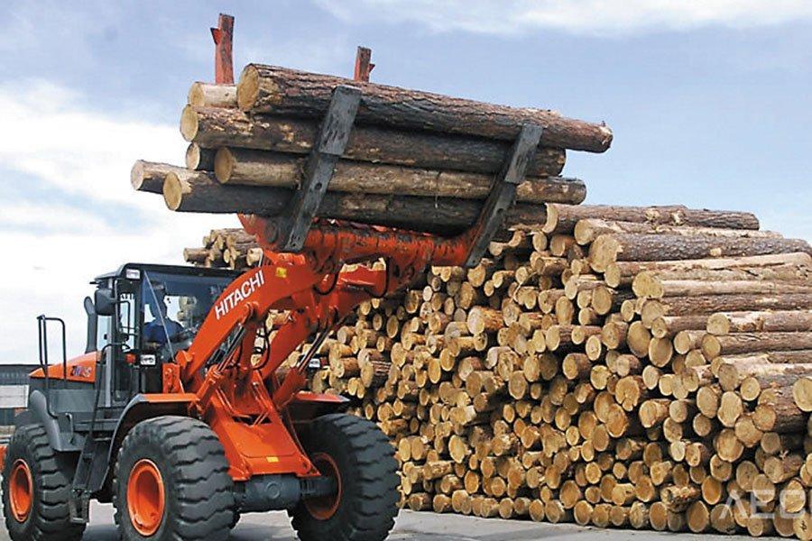 Лесопильные заводы на юге Германии нуждаются в дополнительном количество ели