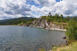 В агентство лесного хозяйства Бурятии нагрянули с обыском из-за вырубки леса на Байкале