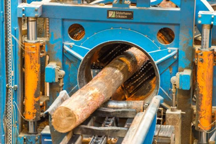 Проект запуска лесопильного завода BSW в Словении отложен