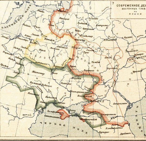 К истории «аграрных лесов» Украины