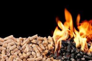 COP25: Чиновники ЕС говорят, что нейтральность углерода в отношении энергии биомассы подвергается критическому пересмотру