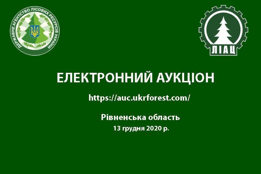 Електронний квартальний аукціон з продажу необробленої деревини (ресурсів січня 2020 року), Рівненська область