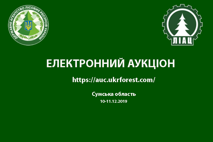 Електронний квартальний аукціон з продажу необробленої деревини (поставка I квартал 2020 року) по Сумській області