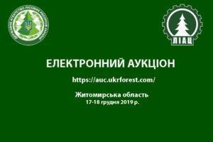 Загальний аукціон продажу необробленої деревини заготівлі 1 кварталу 2020 року Житомирської області