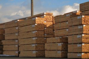 Более половины экспорта древесины из Румынии выходит за пределы ЕС. Какие рынки самые большие?
