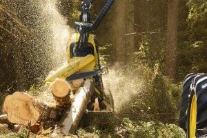 Ротаторы XR завоевывают рынки лесозаготовки и утилизации отходов