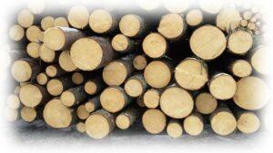 РФ: ГОСТ Р «Лесоматериалы круглые. Организации и методы учёта»  Проект