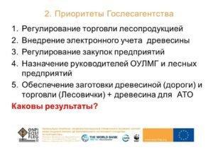 Лесная реформа в Украине: предпосылки, условия, варианты