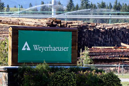 Weyerhaeuser продаст лес в Монтане за $ 145 млн