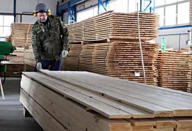 Белорусская продукция деревообработки конкурентоспособна на польском рынке — Беллесбумпром
