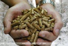 В 2020 г. в системе Минлесхоза Беларуси организуют производство 156 тыс. т топливных пеллет