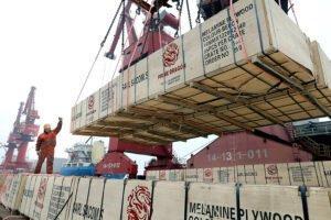 Лесная промышленность Индонезии прогнозирует увеличение экспорта в этом году после падения в 2019 году
