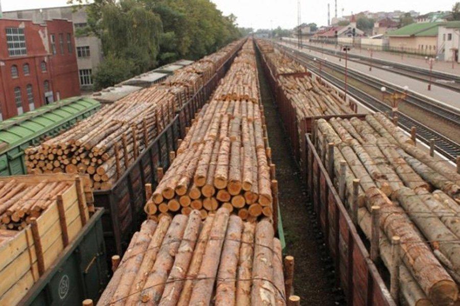 Экспорт «кругляка» из России снизился на 25%