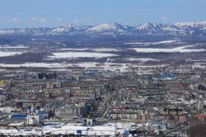 В Сахалинской области планируют создать индустриальный парк лесопереработки