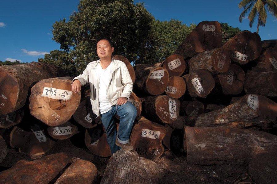 You are currently viewing Объем валовой продукции лесного хозяйства Китая достиг 7,56 трлн юаней в 2019 году