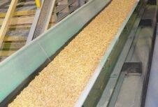 Минлесхоз планирует завершить строительство двух пеллетных заводов к маю 2020 года