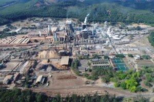 В 2019 г. Celulose Nipo-Brasileira произвела 1,2 млн т беленой эвкалиптовой целлюлозы