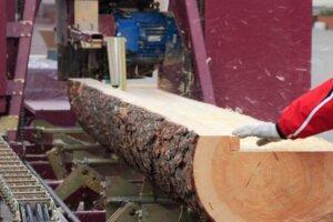 Новая Зеландия: лесопильные заводы закрываются из-за несовершенства правил торговли круглым лесом