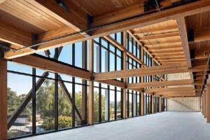 Рост применения массивной древесины в коммерческой строительной индустрии