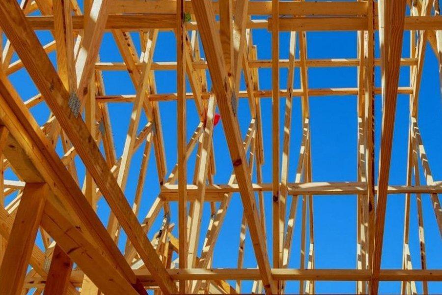 Здания из древесины могут стать важным глобальным поглотителем углерода