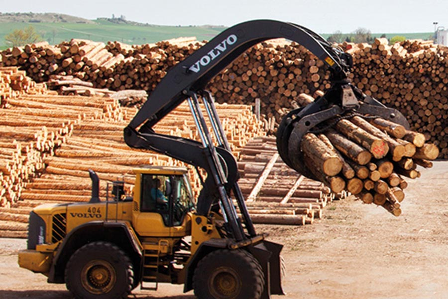 Германия: цены на круглый лес в Германии остаются на низком уровне