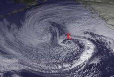 7-8 млн м³ древесины повреждены ураганным ветром