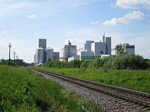 Латвийской лесной отрасли вредят Brexit и перемены климата