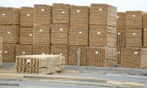 Read more about the article Эстонский бизнесмен: коронавирус может нанести удар по деревообработке