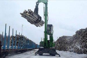 Россия: экспорт круглого леса в 2019 году упал на 16%