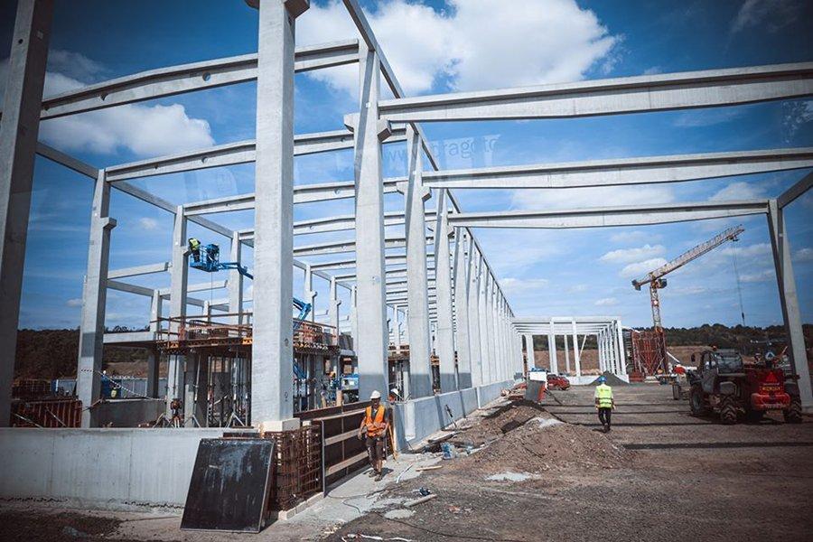Лесопильный завод Labe Wood начнет распиловку в конце февраля