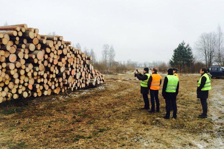Timbeter (Эстония), стартап точного лесного хозяйства, закрывает 920 тыс. евро на расширение деятельности в Юго-Восточной Азии и Латинской Америке
