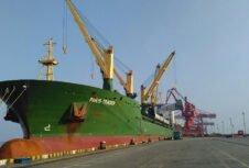 Коронавирус может парализовать экспорт древесины из Европы в Китай; корабли заблокированы в портах