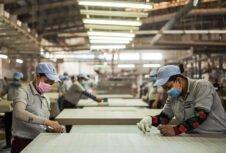 Коронавирус нарушает торговлю древесиной в Китае и начинает сотрясать мировую лесную промышленность