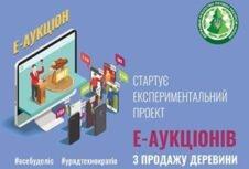 Пошаговая инструкция участия в электронных аукционах древесины на e-площадке ГП «ЛИАЦ» Гослесагентства