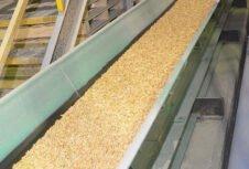 Объем производства пеллет в Германии увеличится до 4,5 млн. тонн