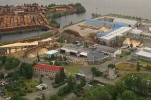 Соломенский лесозавод вводит в эксплуатацию RuScan
