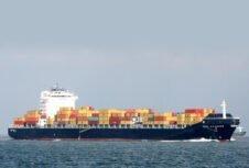 Шведская лесная промышленность страдает от слабости европейских рынков; вирус может сократить экспорт в Китай