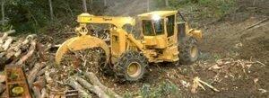 Новый грейферный трелевочный трактор  от Tigercat
