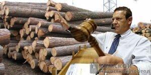 Методы торговли древесиной: опыт стран ЕС для Украины (обзор)