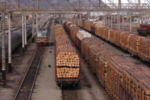 В 2019 году объём экспорта лесоматериалов с Дальнего Востока сократился на 18%