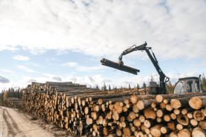 Из-за коронавируса Дальний Восток в январе-феврале 2020 г. сократил экспорт круглого леса на 27,4%