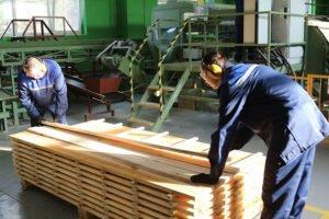 На предприятии Минлесхоза Республики Беларусь введена в эксплуатацию линия лесопиления Ustunkarlı