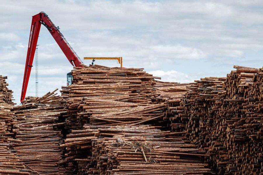 В 2019 г. Финляндия увеличила импорт древесины на 2%