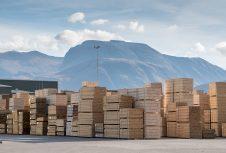 Британская федерация лесопромышленников (TTF) заявляет, что правительство должно поддерживать движение денежных средств в строительстве